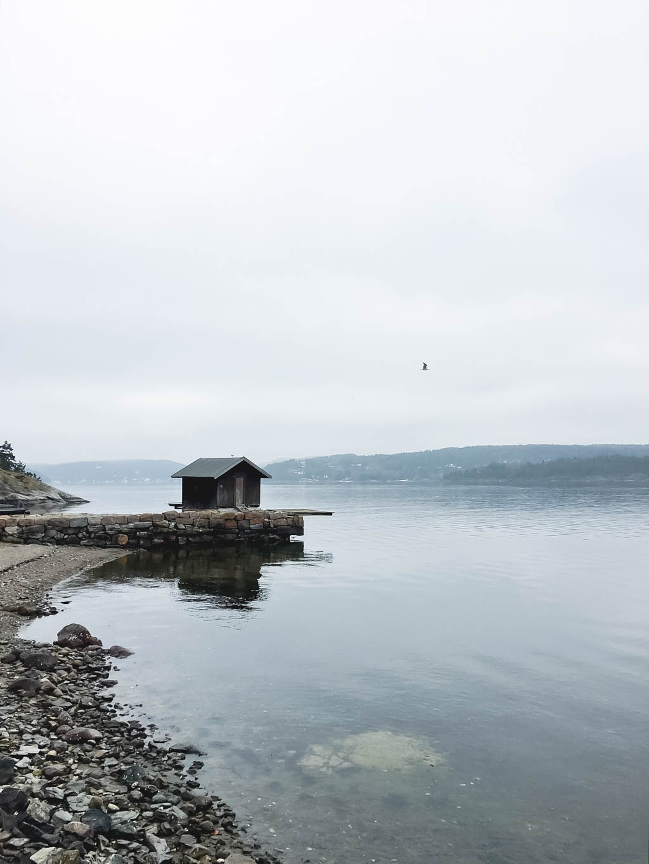 Intercambio cultural en Svartskog